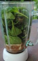 Green Smoothie Recipes the Chocolate Spinach Smoothie